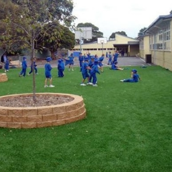 Synthetic Grass for Schools in Canberra
